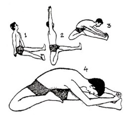 Image result for janushirasana