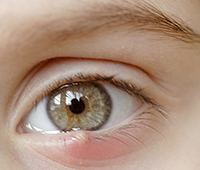 What is Sty - Eyelid cyst Ayurvedic treatment