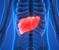 Non-alcoholic fatty liver disease Ayurvedic treatment