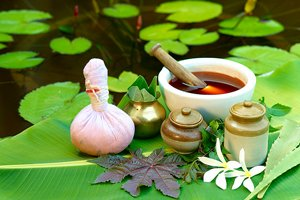 Ayurvedic Science